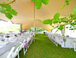 Dougs Hiring tents
